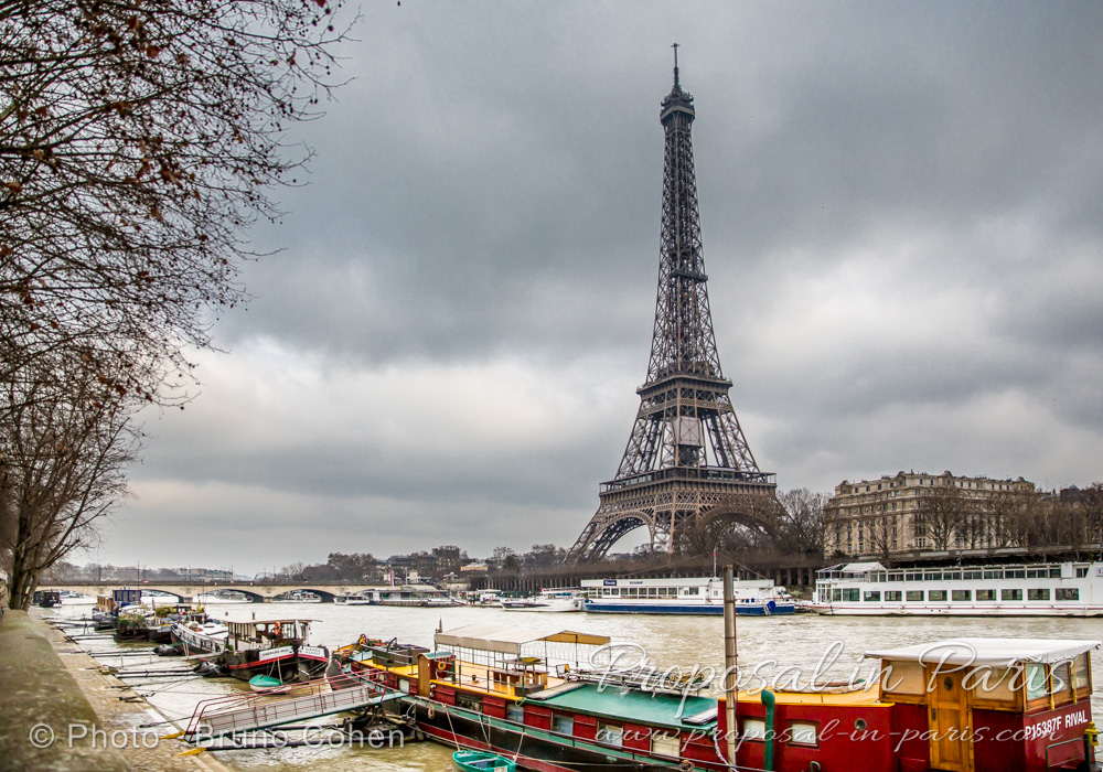 beautiful Eiffel Tower during winter paris